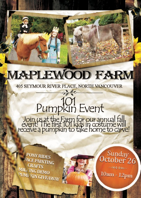 101 Pumpkin Event 2014 Medium