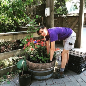 Instagram: Farmer Courtenay beautifying #maplewoodfarm #summer #flowers #farmer #districtofnorthvancouver