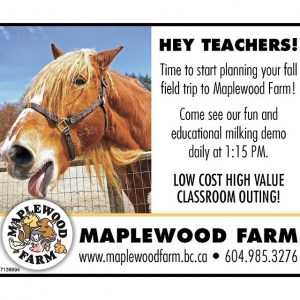 Instagram: #teachers call us today to book your fall visit! Groups visiting September through March receive a 10% discount #maplewoodfarm #northvan #education #farm #farmlife #farmanimals #fieldtrips #school #elementaryschool #kto7 #cirriculum